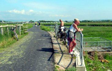 Afon Clwyd Cycleway