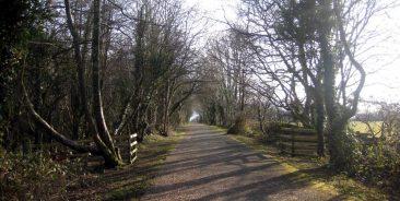 Lon Eifion near Pen y Groes